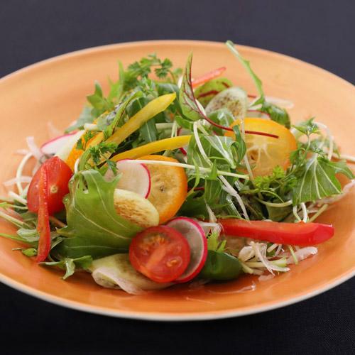 10種類サラダ